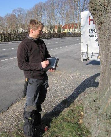 visuelle Baumkontrolle Untersuchung Baumkataster visuelle Inaugenscheinnahme